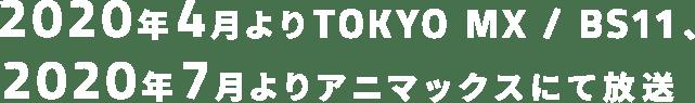 2020年4月よりTOKYO MX / BS11、2020年7月よりアニマックスにて放送
